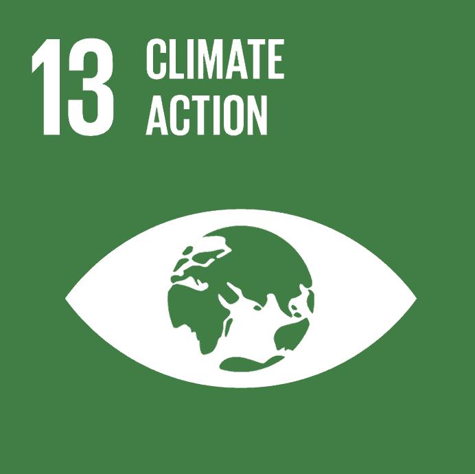 FNs verdensmål nr 13