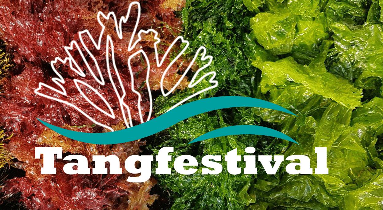 Tangfestival logo