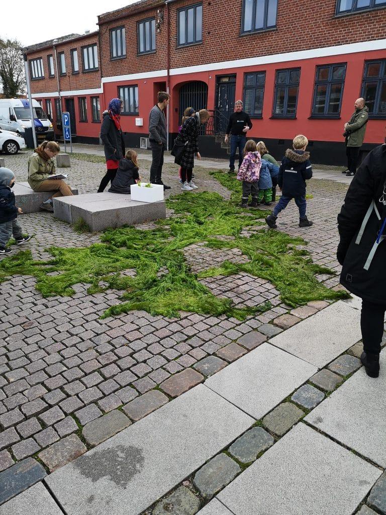Fremvisning af søsalat på gågaden i Nykøbing Sj