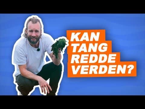 TV2 kras om tang