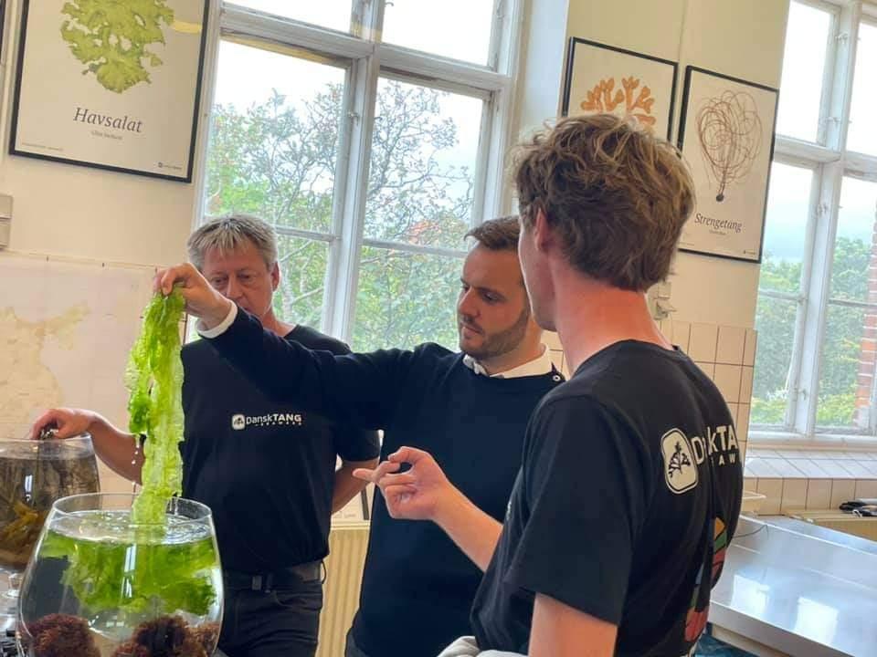 Simon Kollerup på besøg hos Dansk Tang i Odsherred